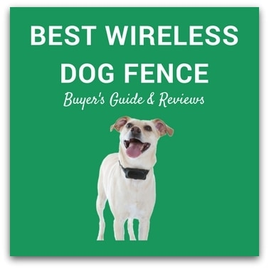Best Wireless Dog Fence 2017 – Buyer's Guide