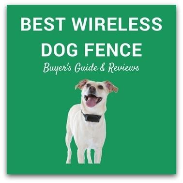 Best Wireless Dog Fence 2017 – Buyer's Guide