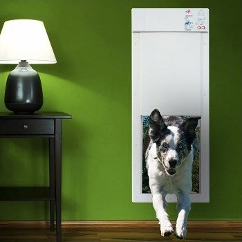 Electronic Doggie Doors
