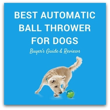Best Automatic Ball Thrower For Dogs 2017 – Buyer's Guide