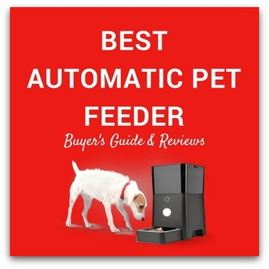 Best Automatic Pet Feeder 2017 – Buyer's Guide