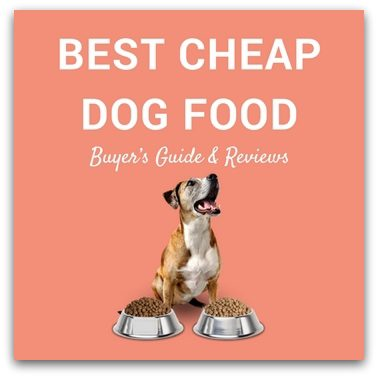 Best Cheap Dog Food
