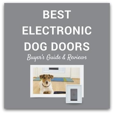 Best Electronic Dog Doors 2017 – Buyer's Guide