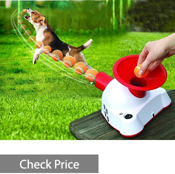 Gotcha Interactive Electronic Talking Dog Fetch Toy