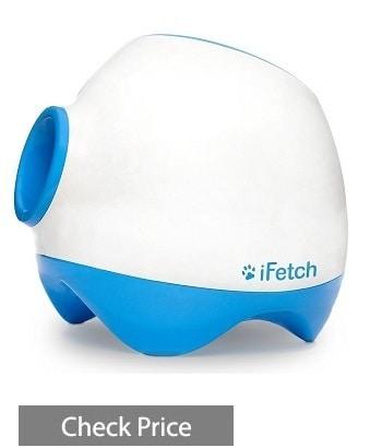 iFetch Too