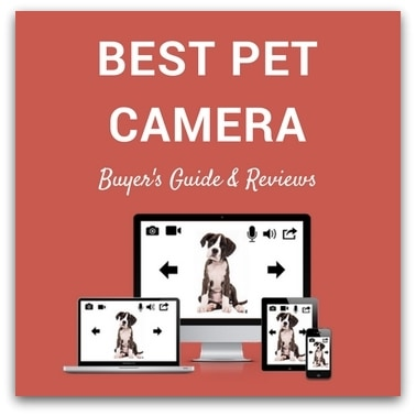 Best Pet Camera 2017 – Buyer's Guide