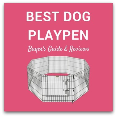 Best Dog Playpen Review