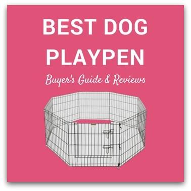 Best Dog Playpen Review