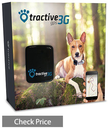 Best Dog GPS Tracker (Apr. 2018) - Buyer's Guide and Reviews Important Factors To Be Considered When Buying The Dog Collar Gps on