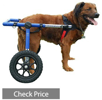 Walkin' Wheels Dog Wheelchair - For Large Dogs 70-180 lbs