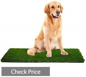 MTBRO Artificial Grass Rug, Perfect Dog Grass Mat, and Grass Doormat