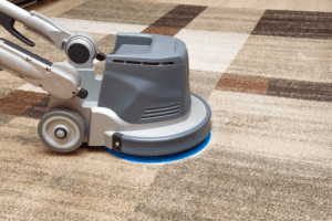 Best Carpet Cleaner For Pets 2020 – Buyer's Guide