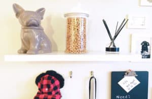How to Create a DIY Pet Accent Wall