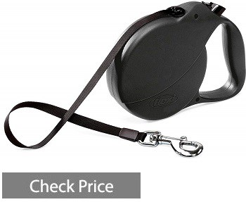 Flexi Explore Retractable Leash