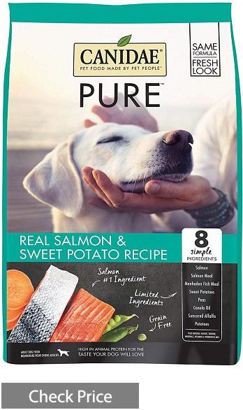 Canidae Salmon Dry Dog Food