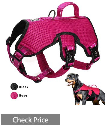 Didog Multi-Use Dog Harness