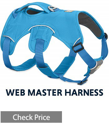Ruffwear WebMaster