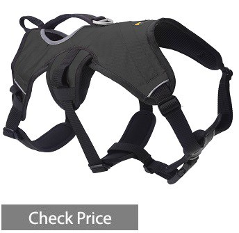 Scenereal Escape Harness