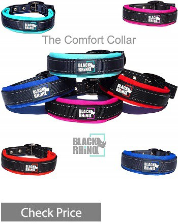 Black Rhino Collar