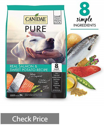 CANIDAE Grain-Free Dry Dog Food