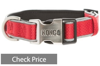 KONG Reflective Padded Dog Collar