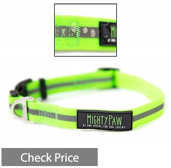 Mighty Paw Waterproof Dog Collar
