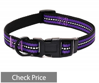Mile High Life Night Reflective Band
