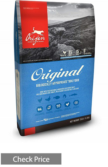 ORIJEN Grain Free Dry Dog Food