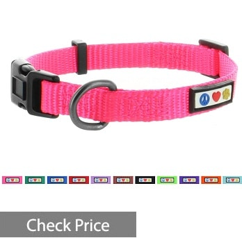 Pawtitas Dog Collar