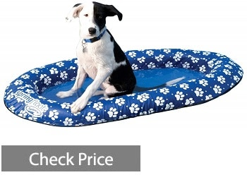 SwimWays Spring Float Paddle Paws