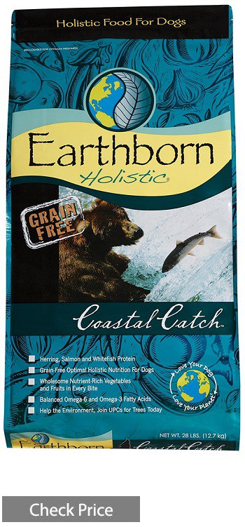 Earthborn Holistic Dry Dog Food