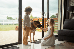 How to Put a Dog Door in a Glass Door