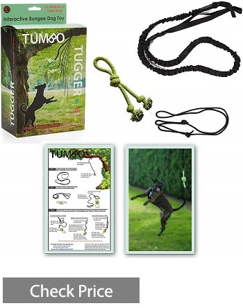 Tumbo Tugger Exercise Dog Toy
