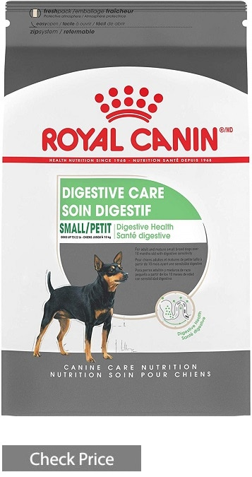 Royal Canin Canine Care Nutrition Medium Digestive Care