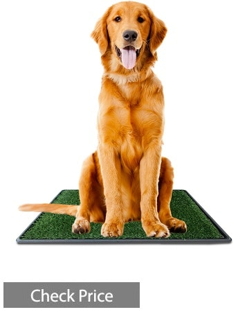 Ideas In Life Dog Potty Grass Pee Pad