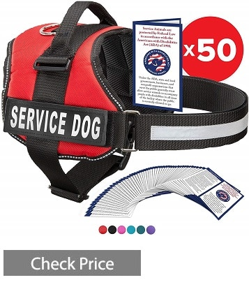 Industrial Puppy Service Dog Pack
