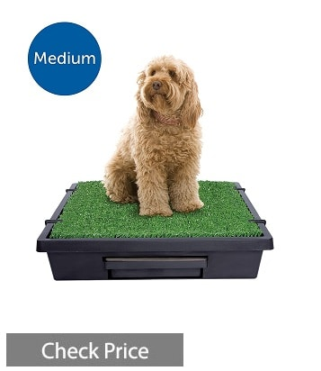 PetSafe Pet Loo Portable Indoor Dog Potty