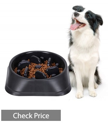 SUOSDEY Slow Feeder Dog Bowl