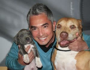 "The Real-Life Journey of Cesar Millan to Becoming the Famous ""Dog Whisperer"""